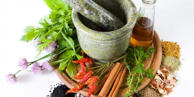 إنتاج حوالي 140 ألف طن سنويا من النباتات الطبية والعطرية بالمغرب