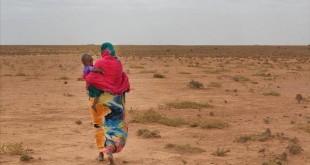 الفاو تحذر من الجفاف و قلة الأمطار في شرق أفريقيا