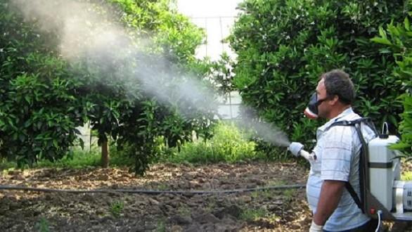 المبيدات الحشرية هي السبب في نصف الوفيات بالتسمم