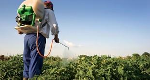 يوم وطني حول الوفيات بسبب المبيدات بالرباط