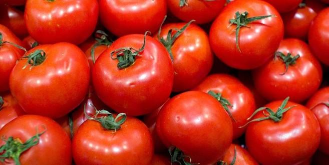 انخفاض صادرات المملكة من الطماطم و البطيخ