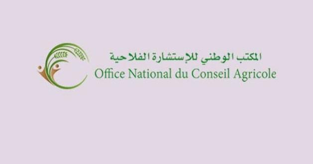 جواد باحجي مدير وطني للاستشارات الفلاحية