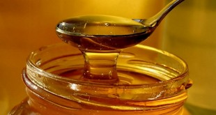 مهرجان العسل بإيموزار اداوتنان