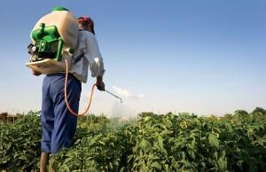 ONSSA : Mise en œuvre du programme CleanFARMS Maroc