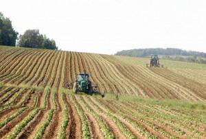Lancement du Registre National Agricole