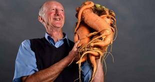 2-carottes-impressionnantes-monde
