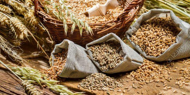 ارتفعت أسعار الحبوب بشكل حاد في المغرب