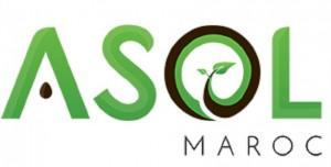 ASOL pionnière du secteur de semences maraîchères au Maroc
