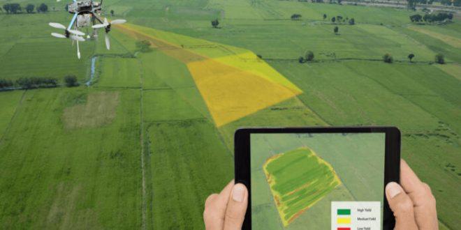 Maroc-Le-Covid-19-stimule-l-utilisation-de-l-agriculture-de-précision