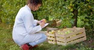 Marrakech abrite une réunion de chercheurs agronomes marocains et étrangers