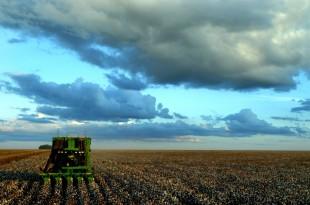 Le Brésil deviendra le plus grand fournisseur de produits alimentaires et agricoles au monde