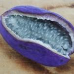 akebi-fruits-insolites-monde