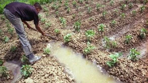 """L'agriculture """"raisonnée"""" à la recherche de ses lettres de noblesse"""