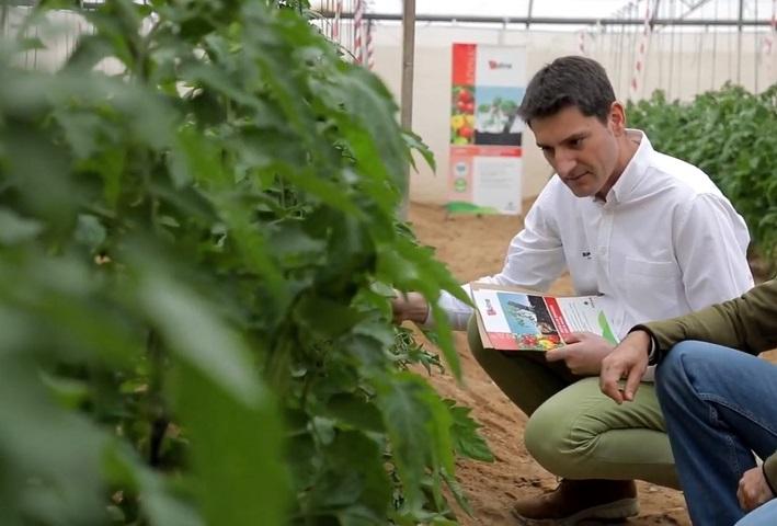 Daniel Mulas, Product Manager Biocontrôle SIPCAM
