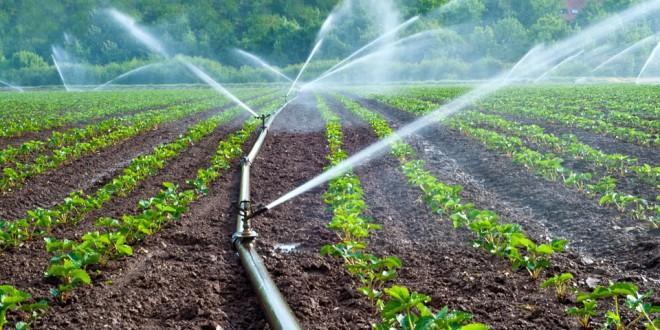 Les aiguadiers, acteurs majeurs dans la préservation des ressources en eau