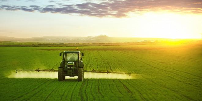La Tunisie observe une dégradation de toutes ses filières agricoles