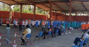 Agrumiculture : 450 exploitations ciblées par la vaste campagne anti-Covid