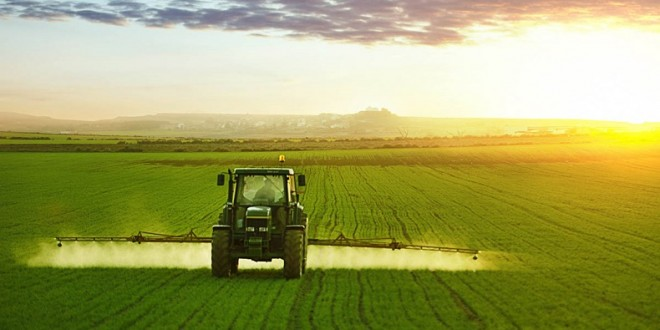 Région Casablanca-Settat: Une bonne campagne agricole