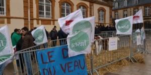 Crise de l'élevage en France, les agriculteurs manifestent