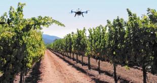 La digitalisation du secteur agricole: Une révolution