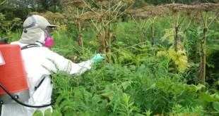 Dow AgroSciences vend ses herbicides DNA à Gowan Company