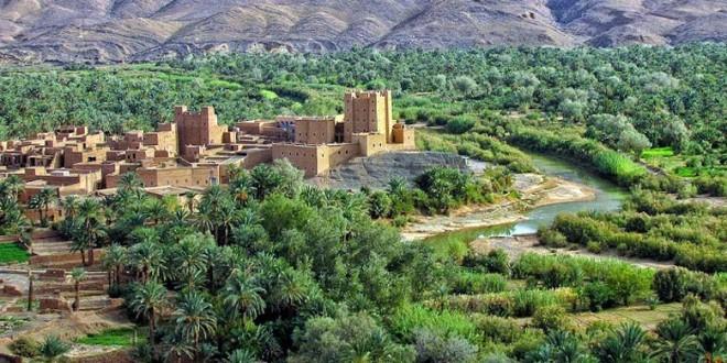 Drâa-Tafilalet: Une région avec un fort potentiel agricole