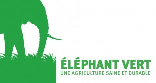 La BERD accorde un prêt de 24 millions d'euros à Eléphant Vert Maroc