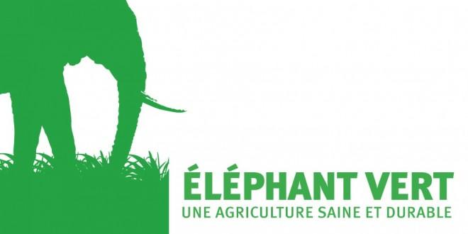 """Résultat de recherche d'images pour """"logo elephant vert"""""""