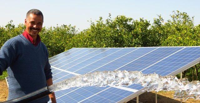 Energie-solaire-en-agriculture