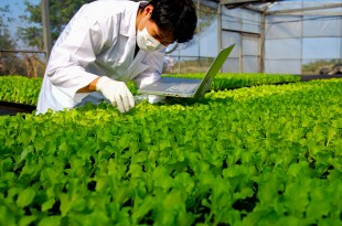 Plan de recherche agricole en France à l'horizon 2025