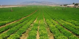 France : Arterris présente son projet agricole 2015-2025