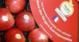 Fruits et légumes : La démarche « vergers écoresponsables » marche bien en France