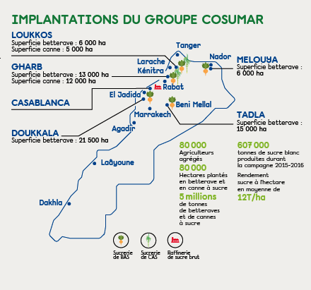 groupe-cosumar-engagements-performances