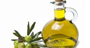 Olive: Le Maroc ou l'Espagne? Qui approvisionnera le marché américain?
