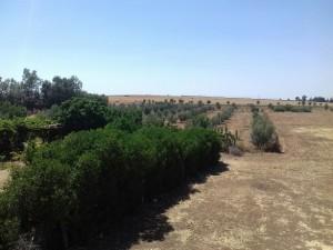 المعدات الفلاحية تسهل عمل المزارعين و تزيد من جودة المنتوج