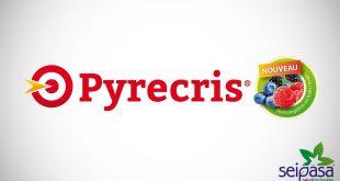 Seipasa obtient l'extension du label Pyrecris au Maroc (culture de baies)