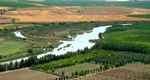L'iran et plus en particulier l'agriculture iranienne offre des , opportunités à saisir pour les professionnels