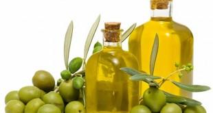 FAO: Techniques de trituration et de dégustation de huile d'olive