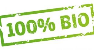 grüner stempel 100% Bio vektor