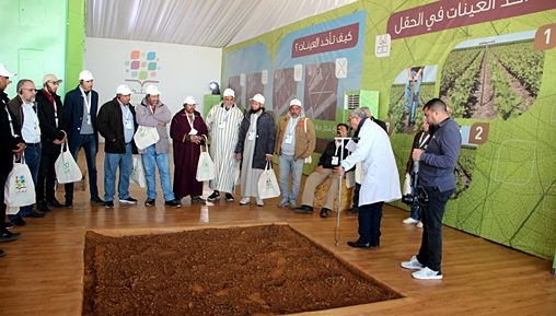 OCP : Al Moutmir obtient des rendements élevés de céréales et de légumineuses