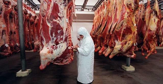 La protection animale dans les abattoirs en France?