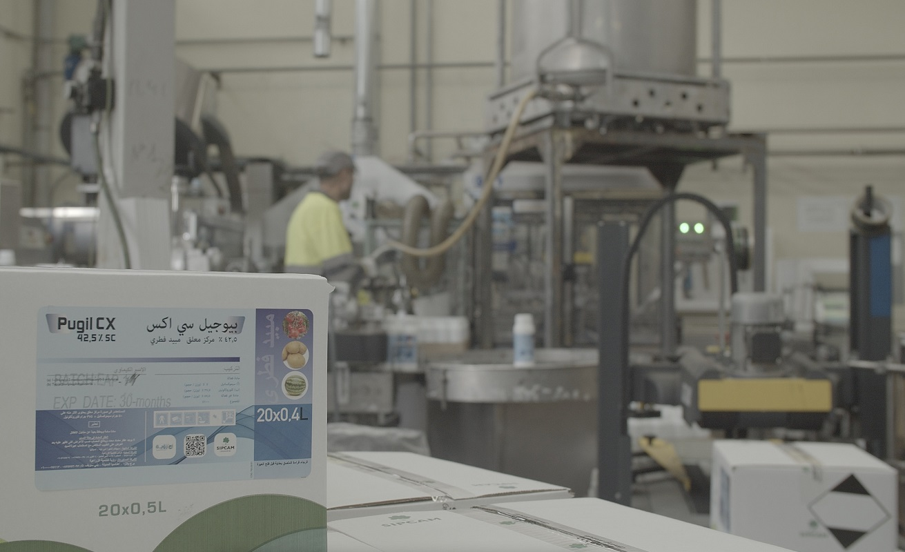 Ligne de Production des Fongicides pour l'Afrique du Nord - Usine SIPCAM de Valencia