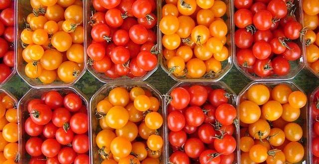 Les exportations marocaines de fruits et légumes vers l'UE en hausse de 15%