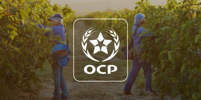 Lancement de la carte de fertilité des sols cultivés de l'OCP