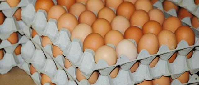Hausse des prix des œufs pour éviter une «chute de production»