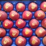 Des pommes « I Love You » pour la Saint Valentin ?