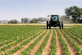 Registre National Agricole, le Maroc se dotera d'une base de données