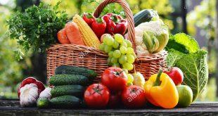 الفواكه والخضروات: بلغت الصادرات المغربية %4 في الاتحاد الأوروبي