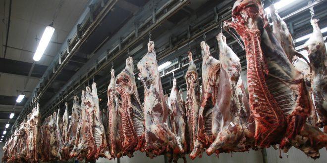 Casablanca : Les abattoirs obtiennent la certification ISO 22000 pour la 3ème année consécutive