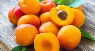 Les prix mondiaux des abricots sont en baisse constante